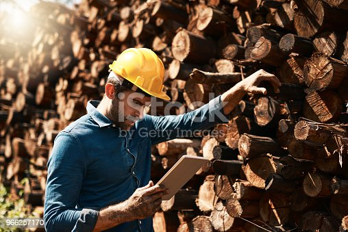 Cropped shot of a lumberjack using his tablet while standing in front of a pile of wood