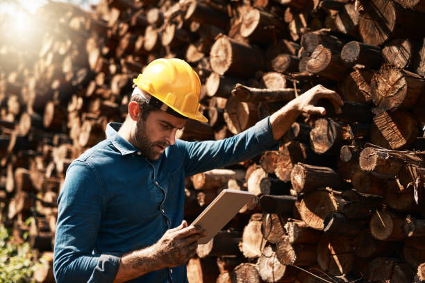 그의 목재 배달 추적 - 목재 공업 뉴스 사진 이미지