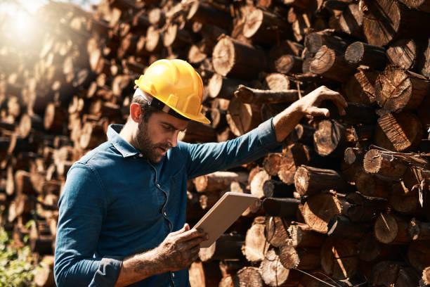 tracking his lumber deliveries - industria forestale foto e immagini stock