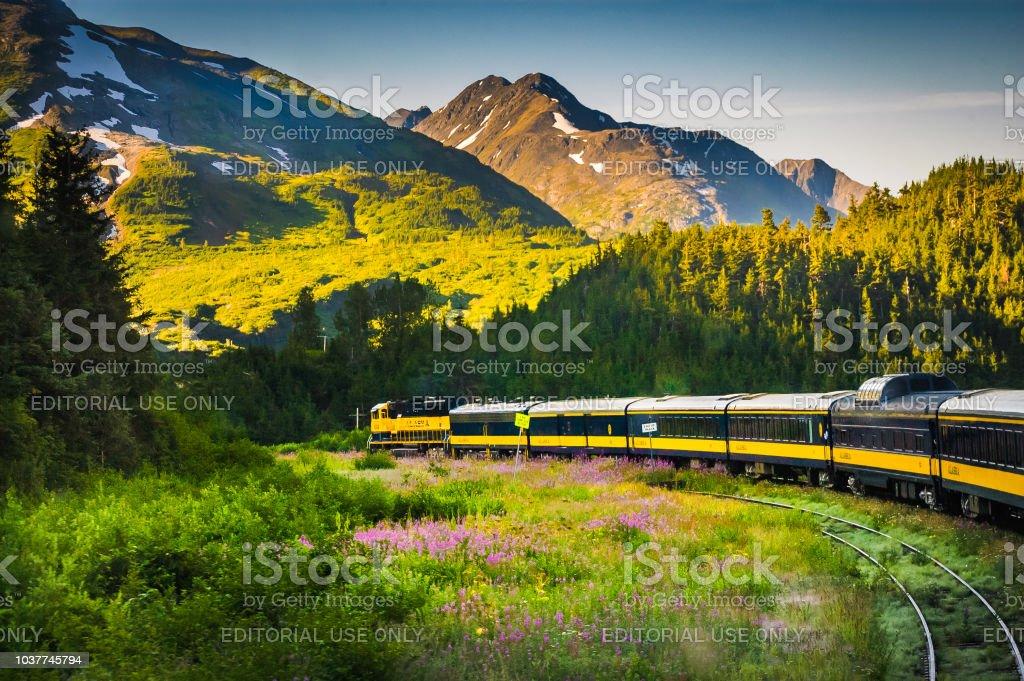 Tracks Across Alaska stock photo