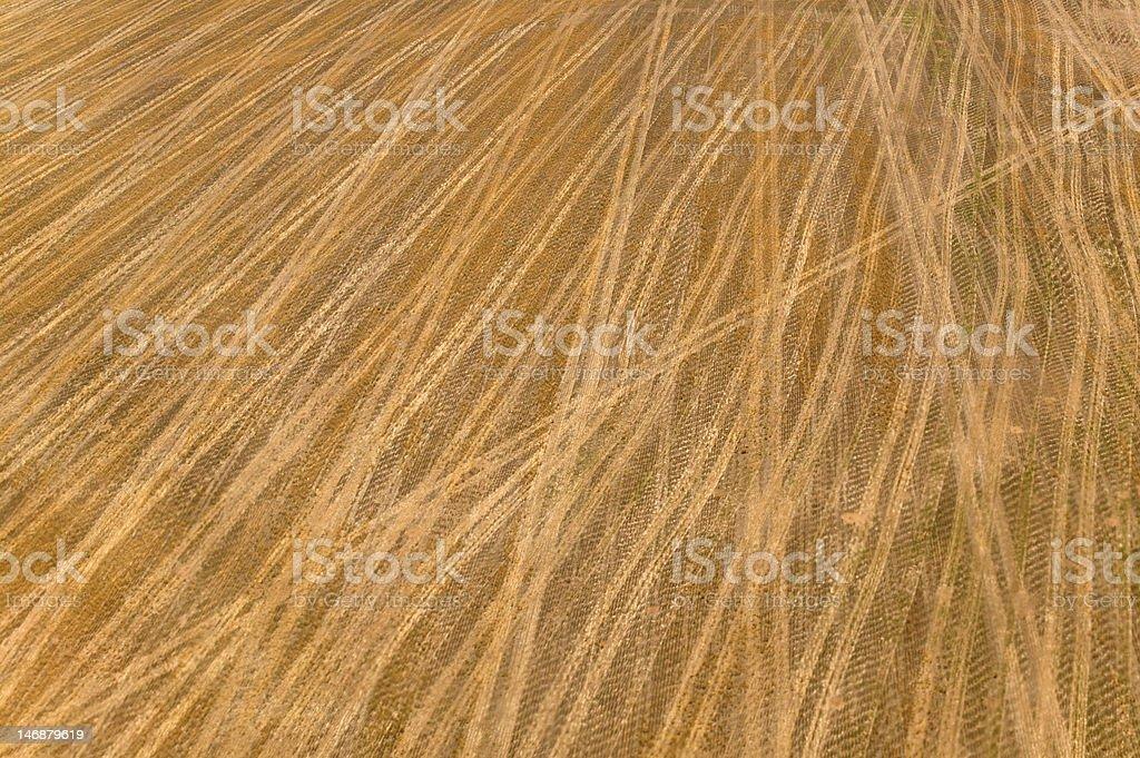 Tracks in field stock photo