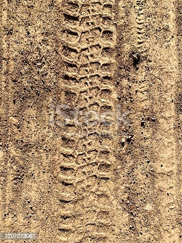 1095367134 istock photo Tracks in the mud 1207273061