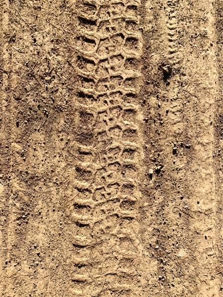 tracks in the mud - bike tire tracks foto e immagini stock