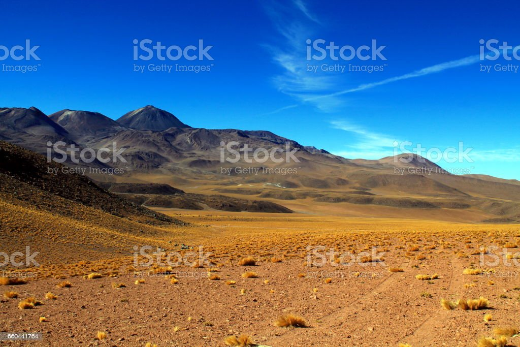tracks on a lava field with a panorama of volcano sairecabur stock photo
