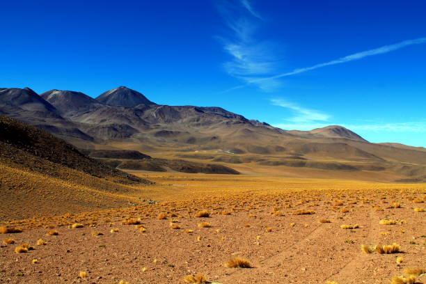 pistas en un campo de lava con una vista panorámica del volcán sairecabur - foto de stock