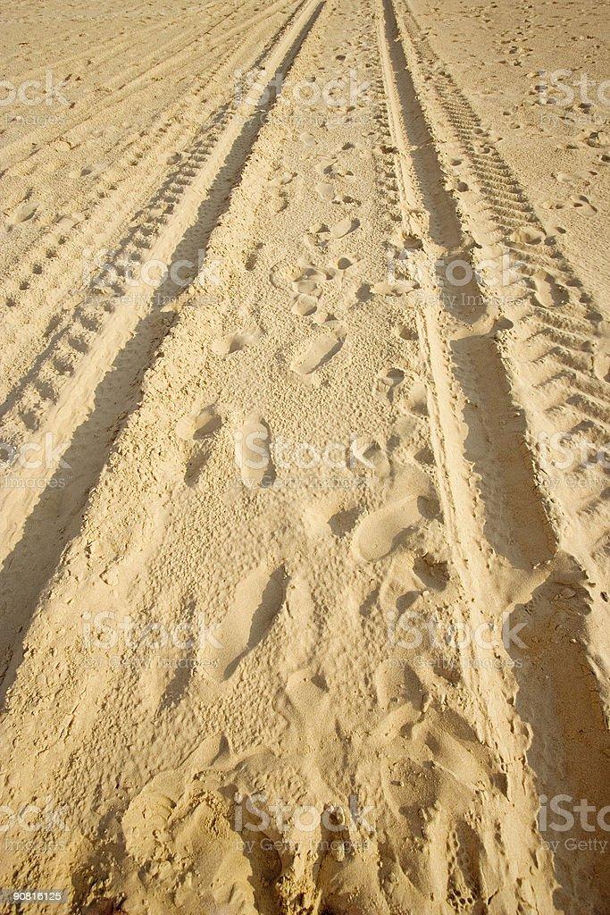 tracks on a sandy beach royalty-free stock photo