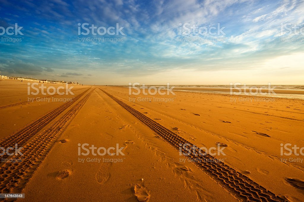 tracks on the beach royalty-free stock photo