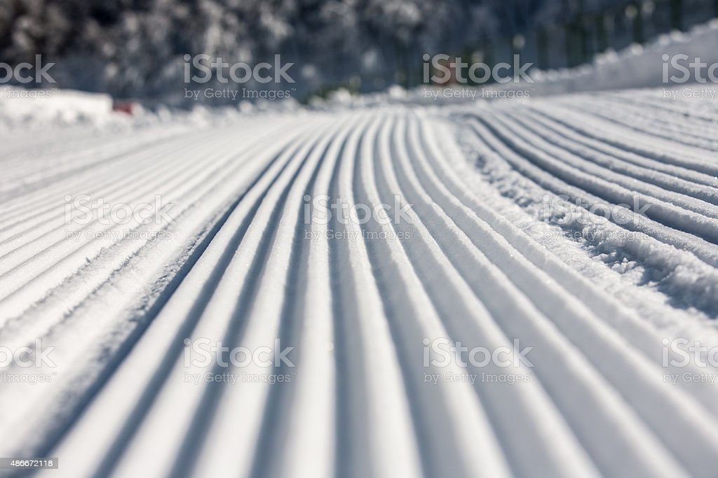 Tracks on the Snow stock photo