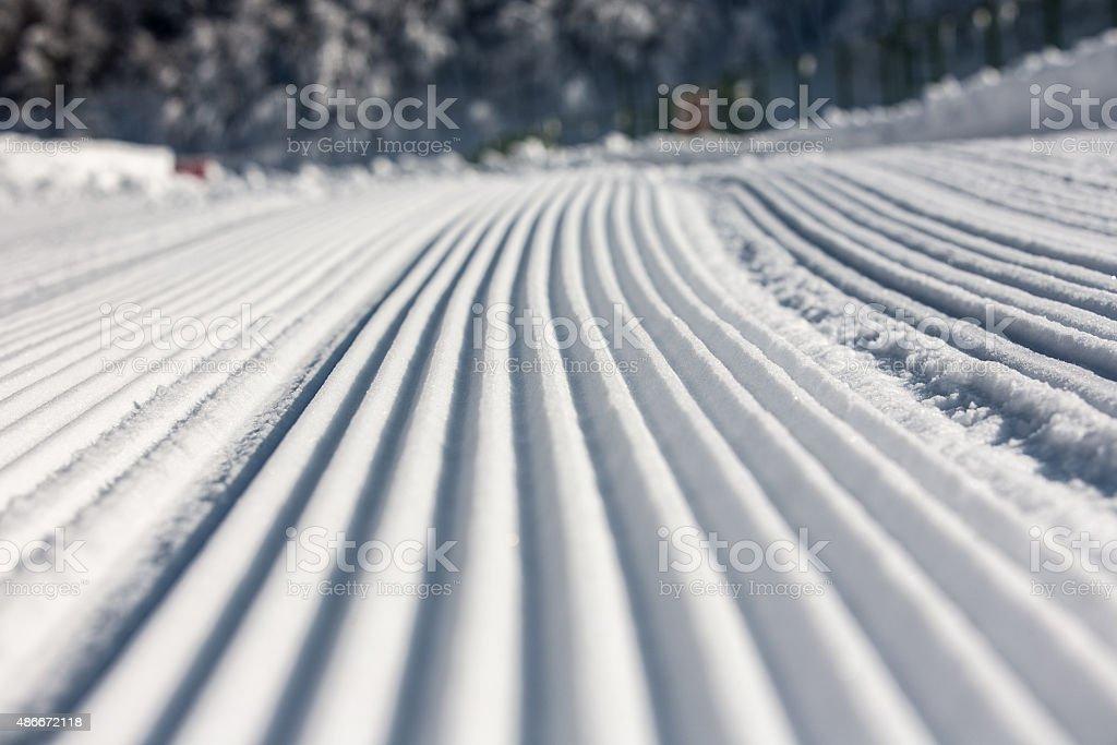 Tracks on the Snow stock photo