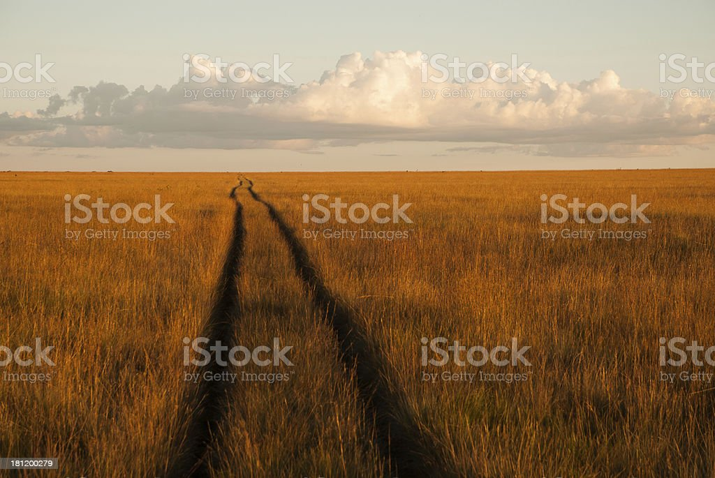 Tracks to Infinity the Savanna Kundelungu National Park Congo stock photo