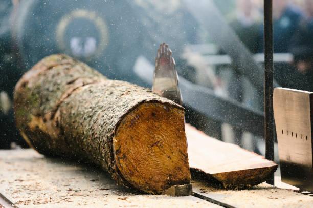 견인 엔진은 나무 줄기에서 목재를 자르면서 구식 휴대용 제재소 테이블을 구동합니다. - 제조 공장 뉴스 사진 이미지