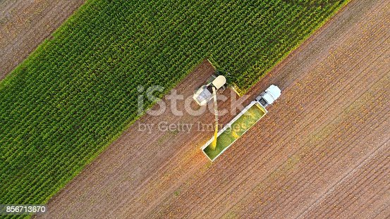 istock Tractor and farm machines harvesting corn in Autumn 856713670