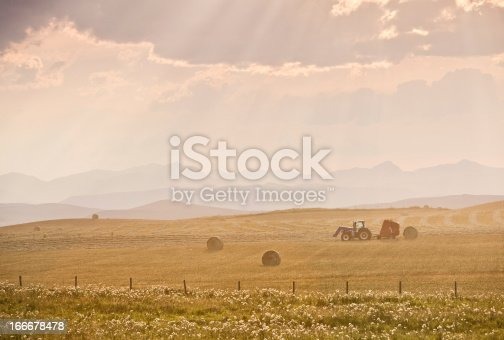 istock Tractor and Hay Bales During Fall Harvest on Canadian Prairie 166678478