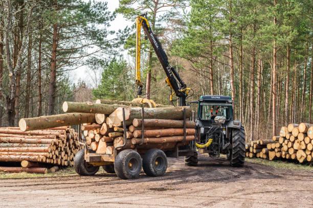 traktor och släpvagn med timmer - pine forest sweden bildbanksfoton och bilder
