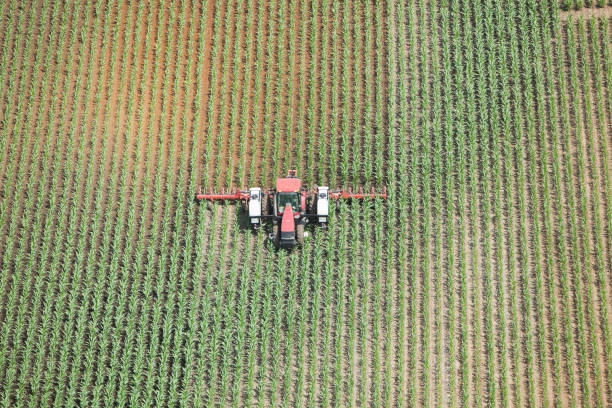 Tractor Applying Liquid Nitrogen Fertilizer to Corn Field Aerial view of a tractor towing an applicator is spraying liquid nitrogen fertilizer on a late Spring corn field. The left corn and behind the spreader is wet with darker soil. Shot from the open window of a small plane.