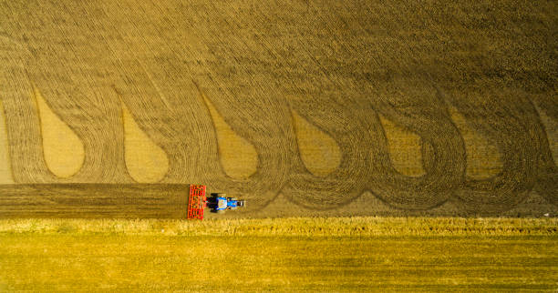 Tractor art stock photo