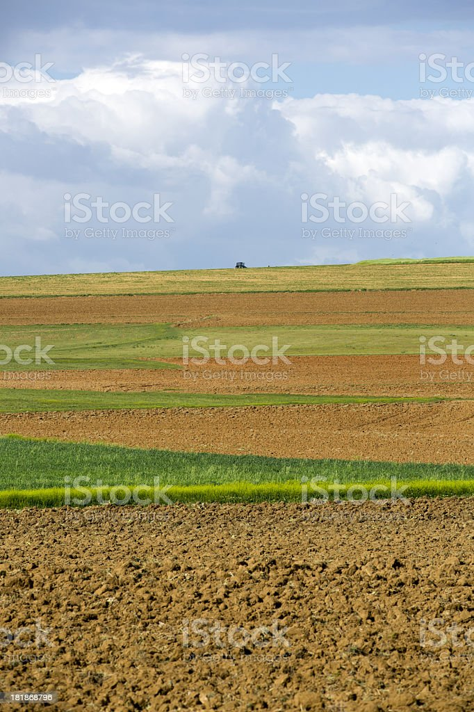 Tractor at Green Field and unplowed area royalty-free stock photo