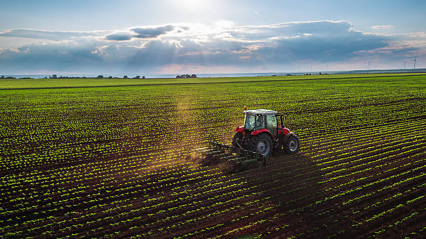 tractor cultivating field at spring - gewas stockfoto's en -beelden