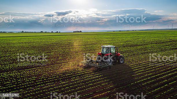 Photo of Tractor cultivating field at spring