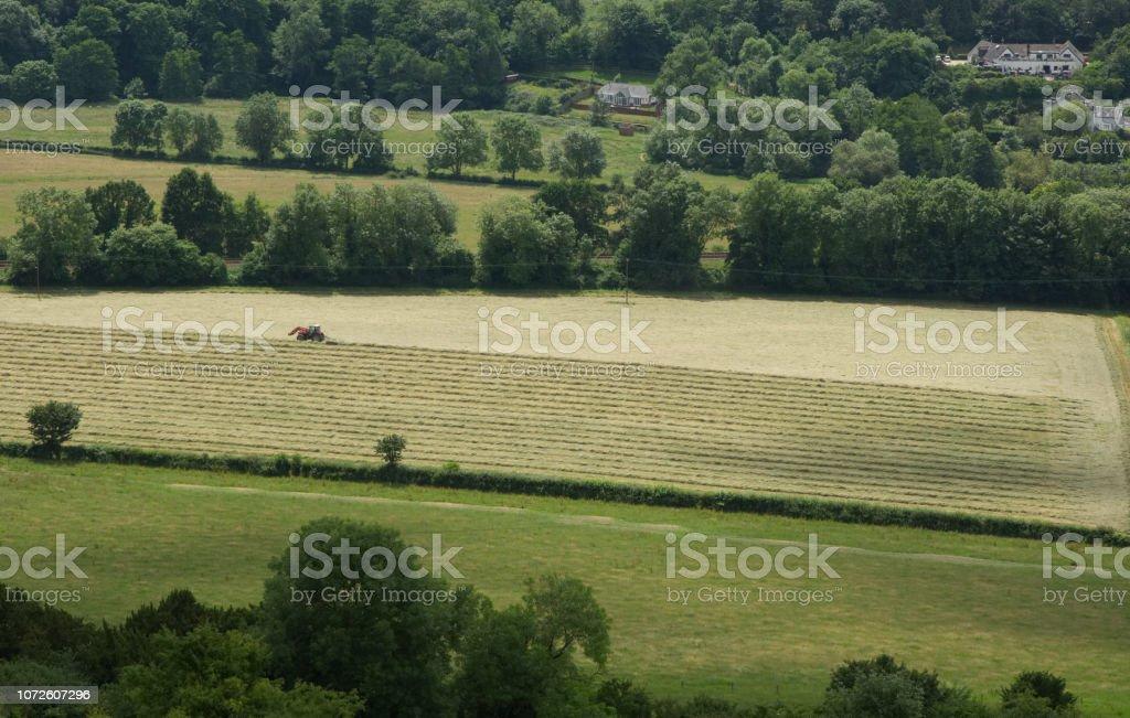 Tractor cutting grass, Surrey, England stock photo