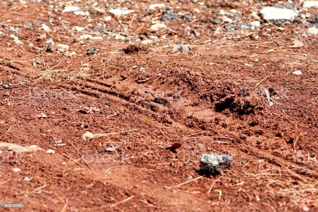 Trator, escavadeira, carro, pneus automotivos na trilha enlameada. Rastreamento de lama e a roda na estrada depois da chuva. Da lama com trilha de roda de caminhão em dia chuvoso. Fundo, textura, padrão, material, papel de parede. - foto de acervo