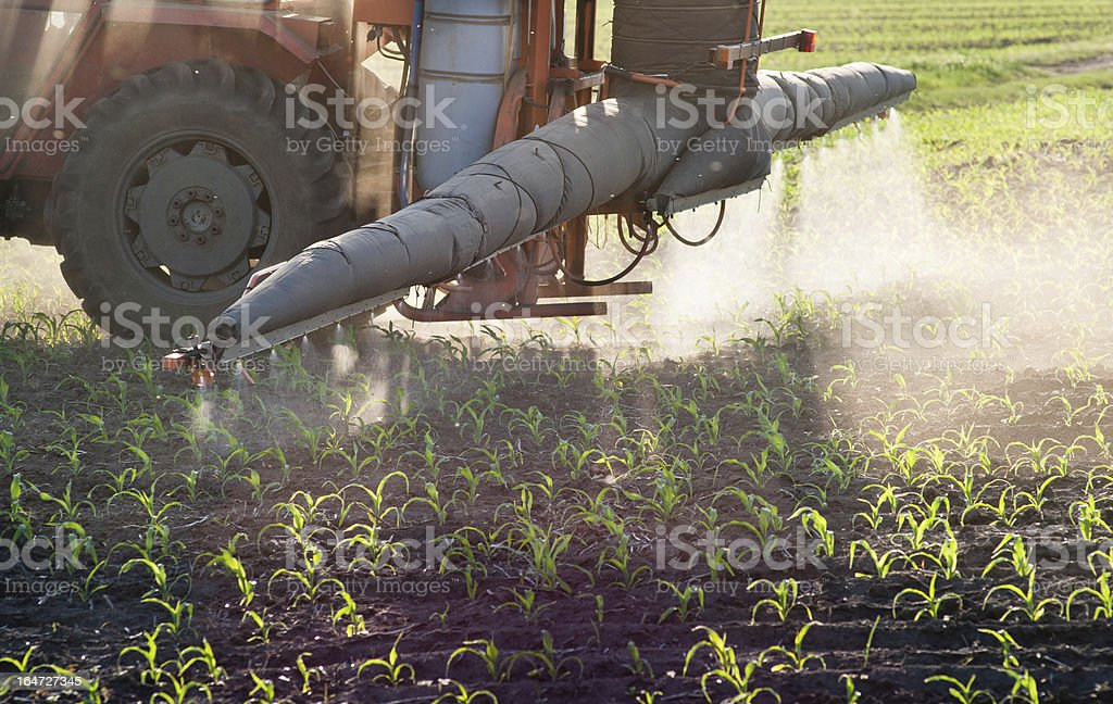 Tractor fertilizes crops royalty-free stock photo