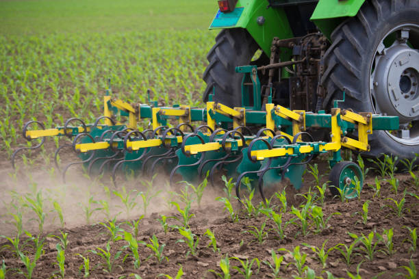 Tractor harrowing in corn field Tractor pulling equipment for hoeing in corn field in spring time garden hoe stock pictures, royalty-free photos & images
