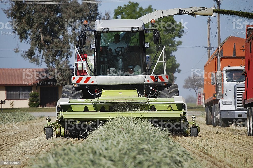 Tractor Harvesting Cut Hay Silage royalty-free stock photo