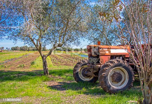 An old tractor parked in the Apulian countryside. In the background a cultivated land and an olive grove.