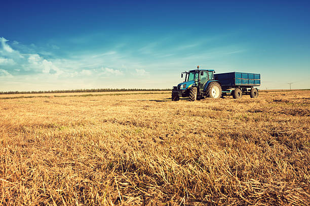 Traktor im Stoppelbart field – Foto