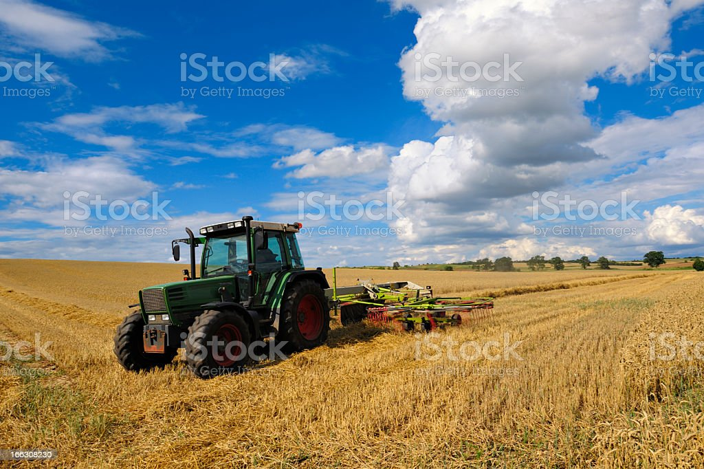 Tractor in Wheat Field under Dramatic Cloudy Sky During Harvest royalty-free stock photo