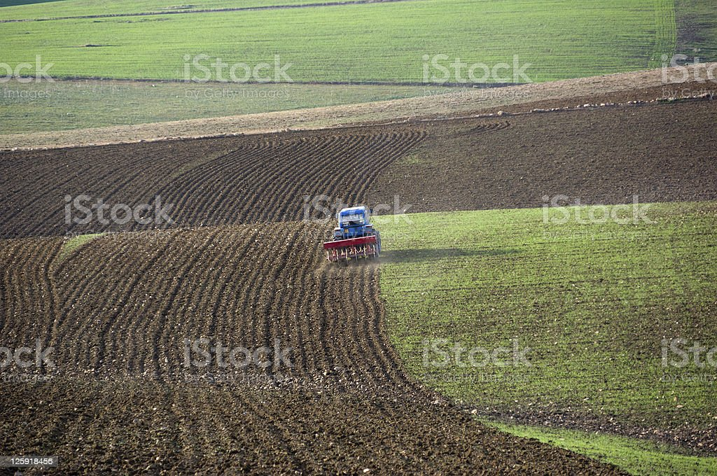 tractor is plowing the field royalty-free stock photo
