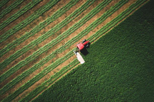 Traktor bewegt grüne Agrarbereich, Luftbild. Landwirtschaft und Ernte. – Foto