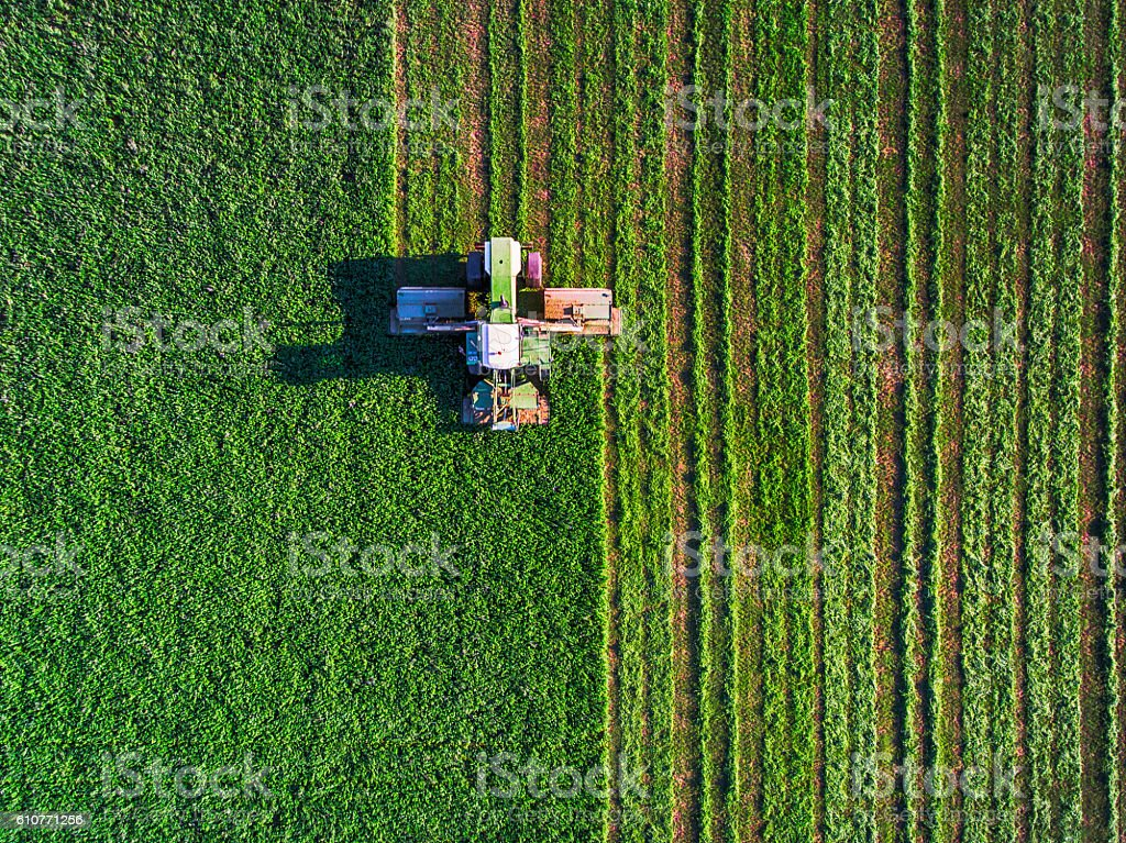 Tractor mowing green field stock photo