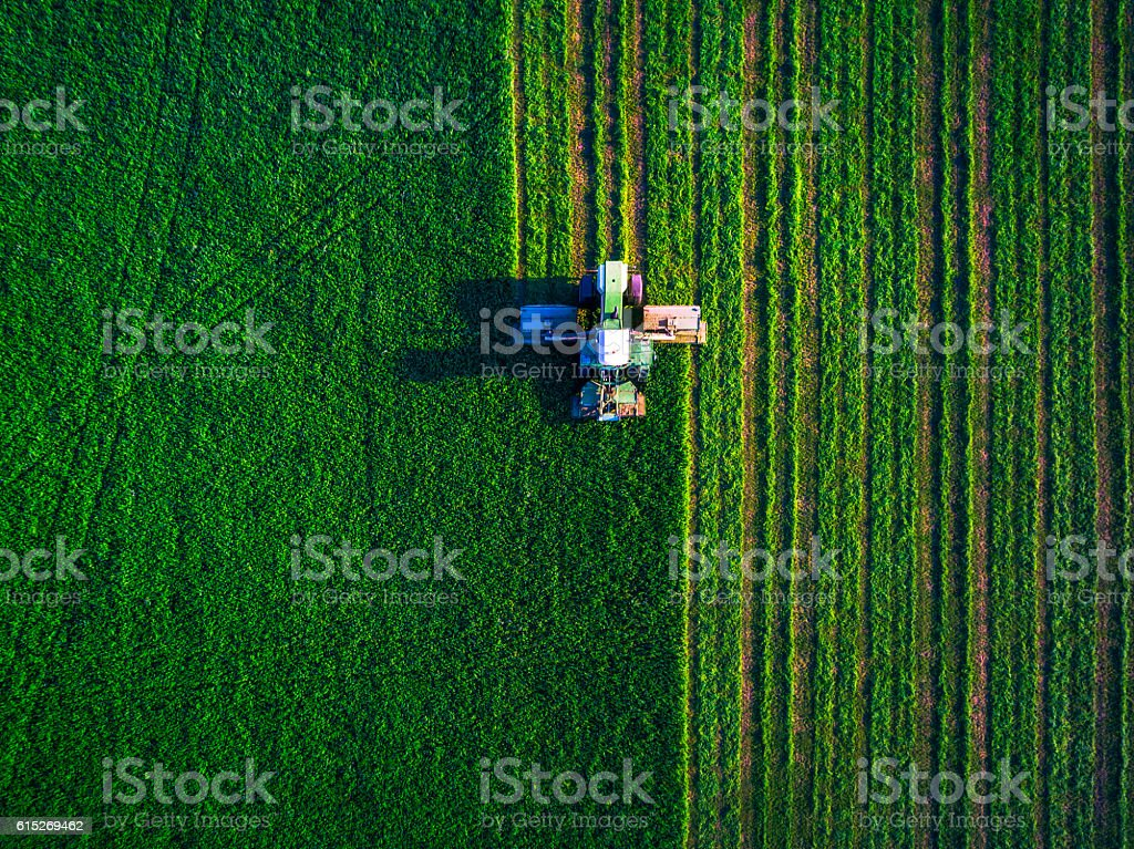 Tractor mowing green field​​​ foto