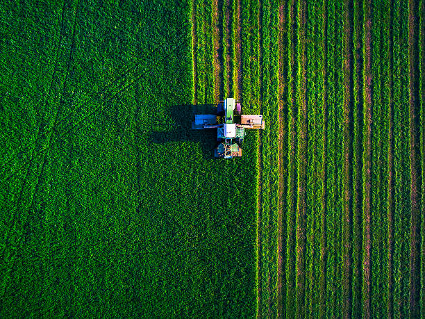tractor mowing green field - gewas stockfoto's en -beelden