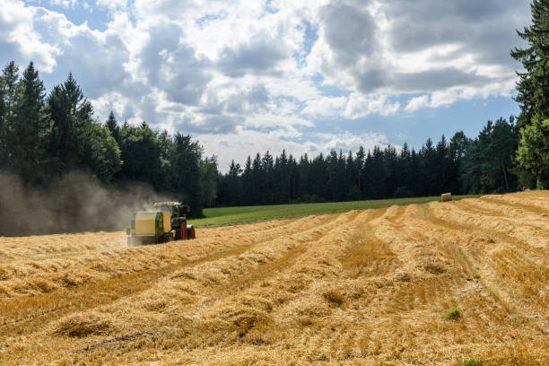 tractor on field - harvesting the corn - aerial view soil germany stock-fotos und bilder