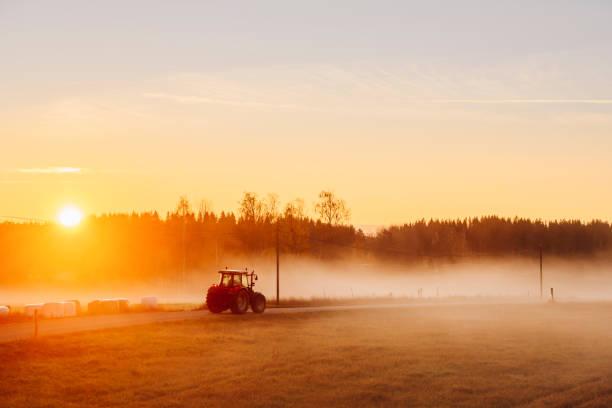Tractor en carretera rural al amanecer con niebla y sol embellecedor - foto de stock