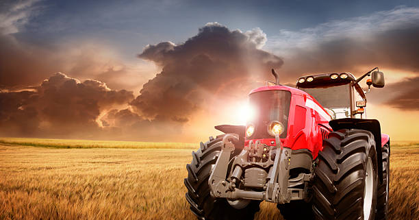 Tractor on the barley field by sunset Tractor on the barley field by sunset. See other similar pictures:  agricultural equipment stock pictures, royalty-free photos & images