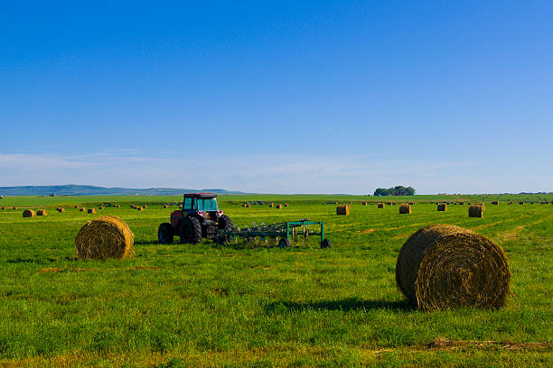 Tractor on the Canadian Prairie stock photo