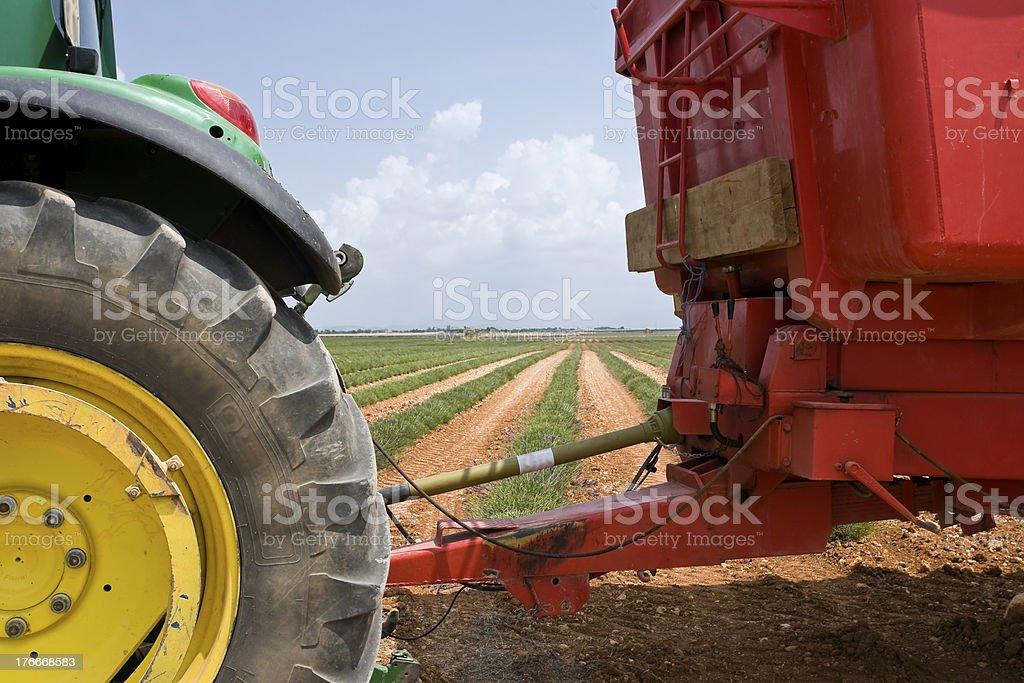 Tractor en el campo de foto de stock libre de derechos