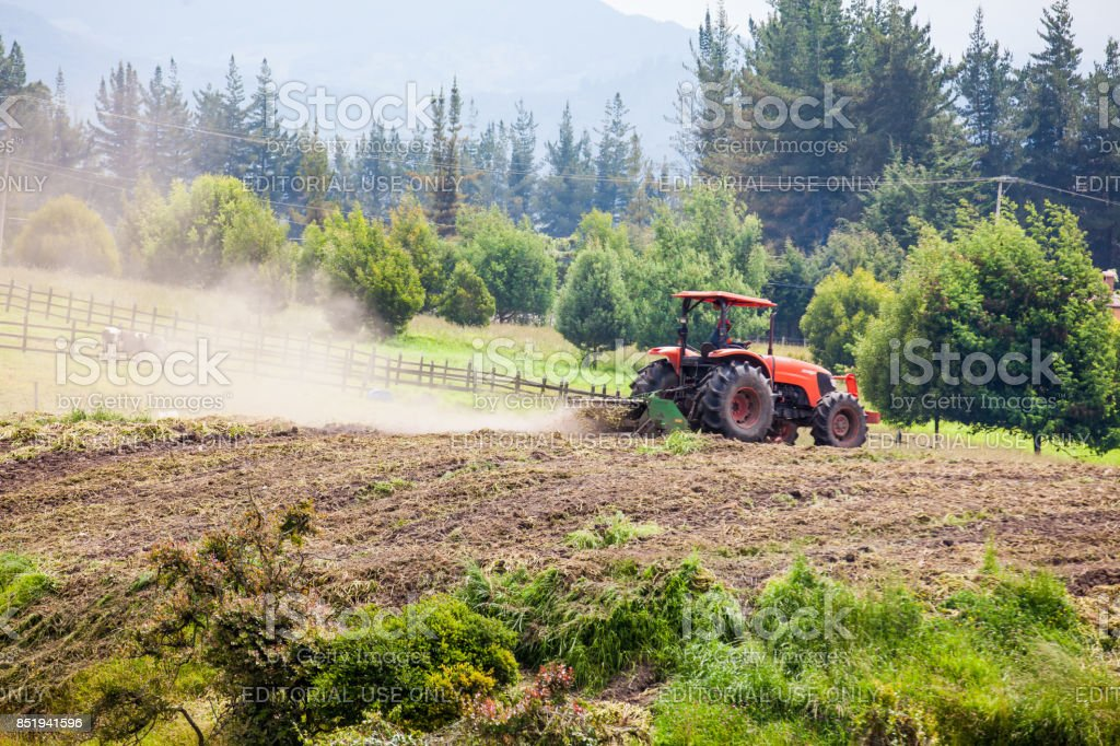 Tractor plowing to sow yellow potato stock photo