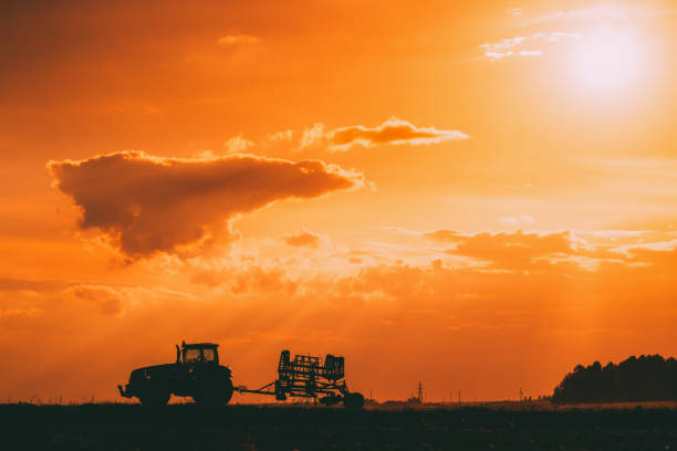 Tractor Rides On Countryside Road. Beginning Of Agricultural Spring Season. Cultivator Pulled By A Tractor In Rural Field Landscape Under Sunny Summer Sunset Sunrise Sky. Backlit Dramatic Lighting stock photo