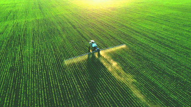 nawóz natryskowy ciągnika na zielonym polu. - zbierać plony zdjęcia i obrazy z banku zdjęć