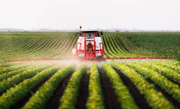 Tractor spraying a field of soybean Tractor spraying a field of soybean agricultural machinery stock pictures, royalty-free photos & images