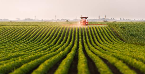 Traktor sprühen ein Feld von Soja – Foto