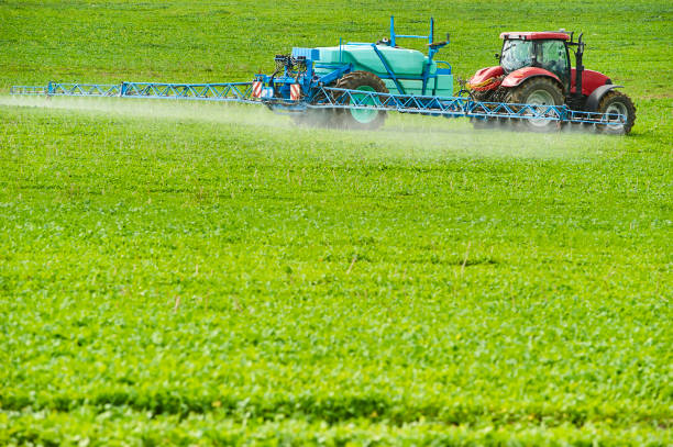 Tractor spraying pesticides on field with sprayer Tractor spraying pesticides on field with sprayer at spring monoculture stock pictures, royalty-free photos & images