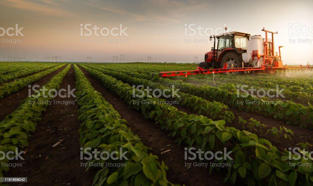 Traktör ilkbaharda püskürtücü ile soya tarlasında pestisit püskürtme - Royalty-free Araba kullanımı Stok görsel