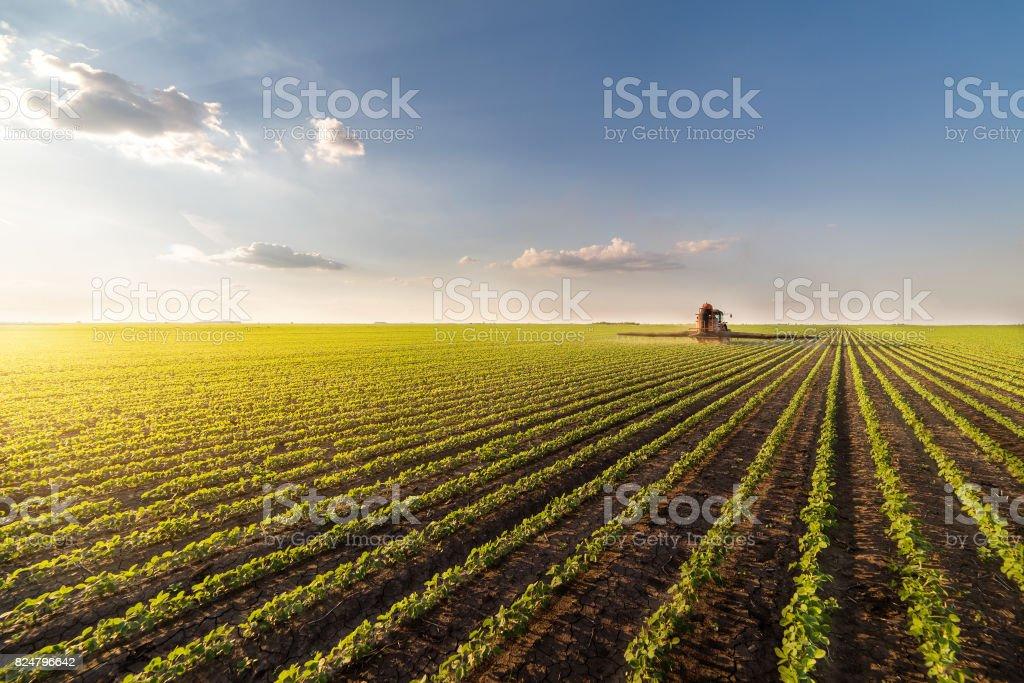 Trator de pulverização de pesticidas em campo de soja com pulverizador na primavera foto de stock royalty-free