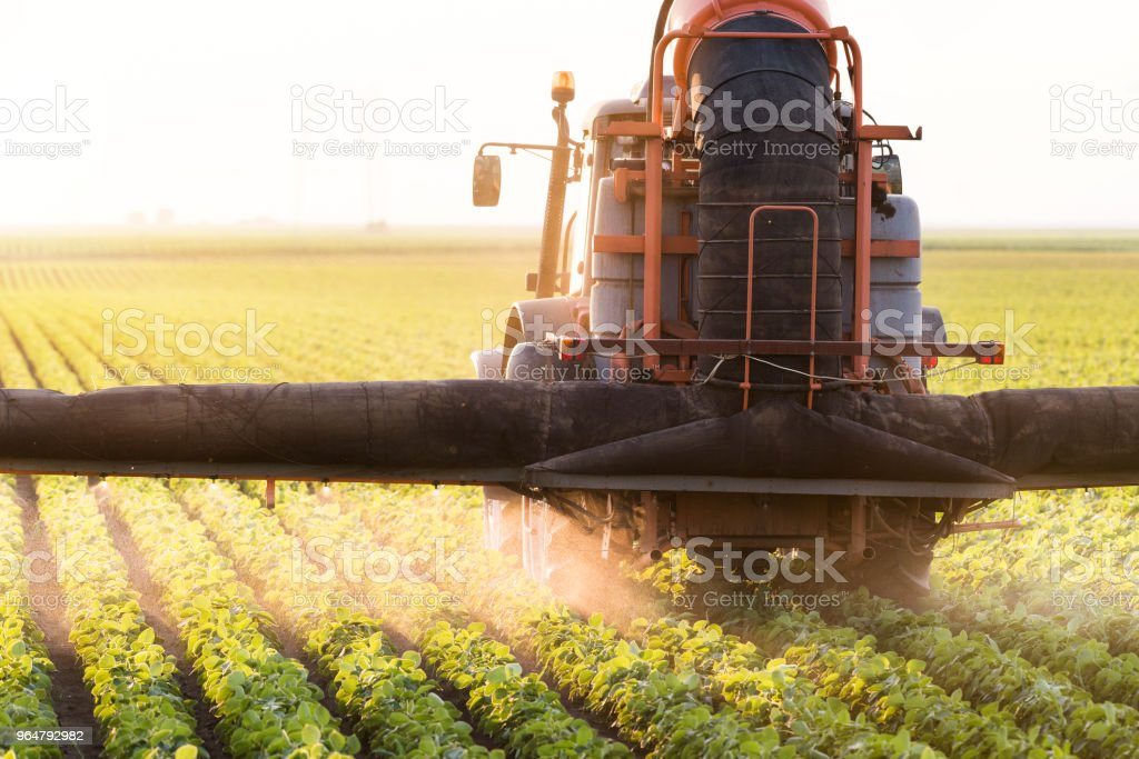 Tractor spraying pesticides on soybean field with sprayer at spring royalty-free stock photo